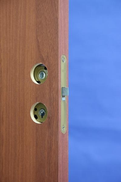 Устройство замка в межкомнатной двери Олови