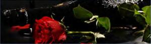 """Кухонный фартук ХДФ фотопечать """"Вино 175"""" 610х2030х3мм"""