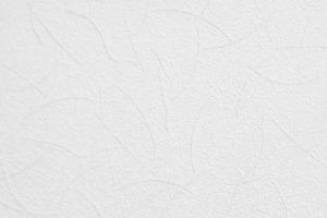 """Обои под покр. флизелин """"White Star"""" 07-051 1,06х25м"""